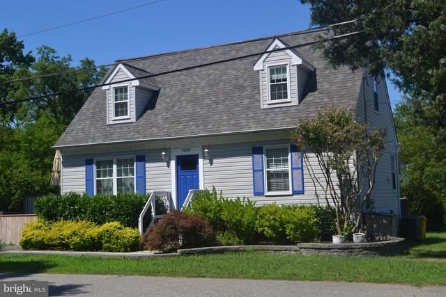 7630 Paradise Beach Road, PASADENA, MD 21122 (#MDAA439812) :: Coleman & Associates