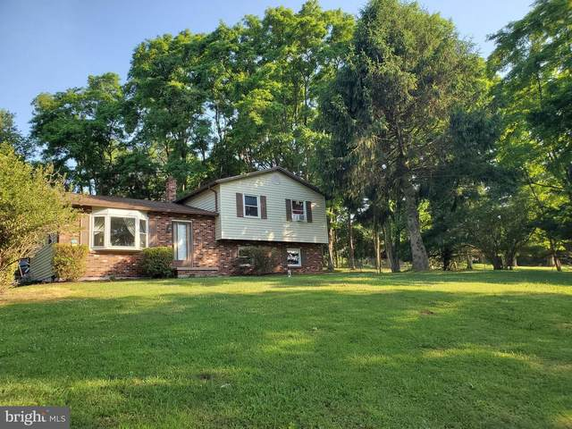 419 Corner Ketch Road, DOWNINGTOWN, PA 19335 (#PACT510842) :: REMAX Horizons