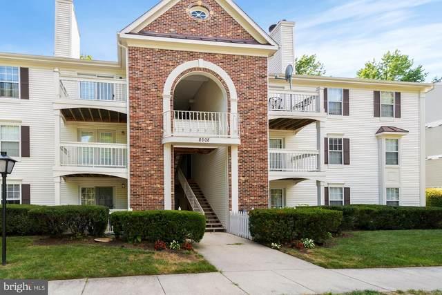 8608 Shadwell Drive #47, ALEXANDRIA, VA 22309 (#VAFX1140410) :: Fairfax Realty of Tysons