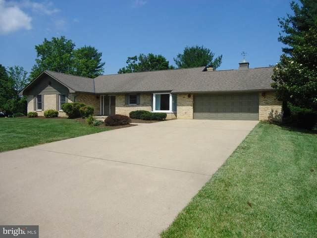 422 Eagle Street, WOODSTOCK, VA 22664 (#VASH119682) :: Pearson Smith Realty
