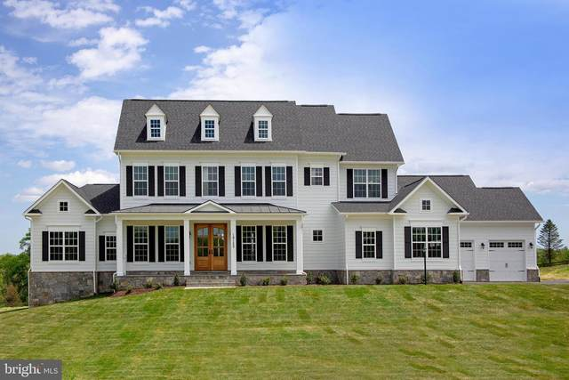 Pheasant Chase Court, PURCELLVILLE, VA 20132 (#VALO415872) :: Talbot Greenya Group