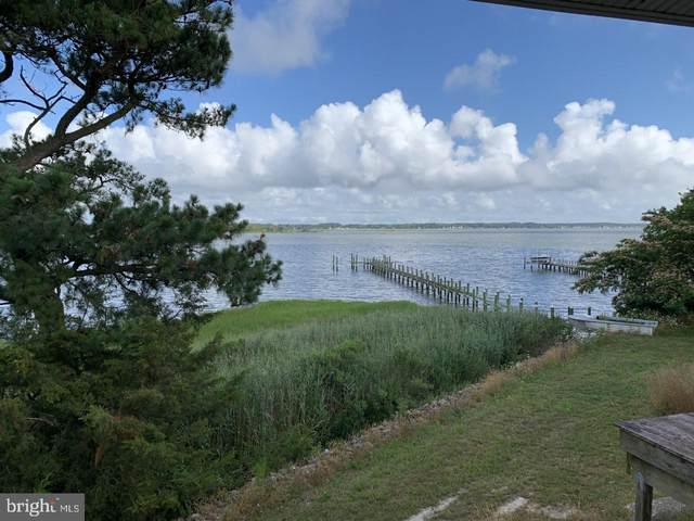 30505 Sandy Landing Road, DAGSBORO, DE 19939 (#DESU164416) :: Atlantic Shores Sotheby's International Realty