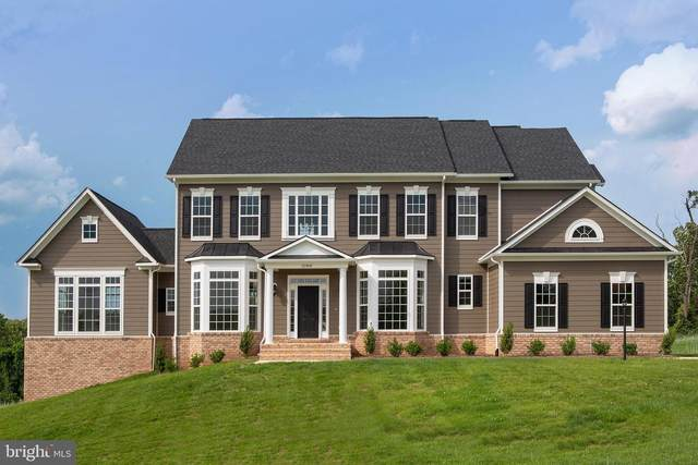 Pheasant Chase Court, PURCELLVILLE, VA 20132 (#VALO415874) :: Talbot Greenya Group