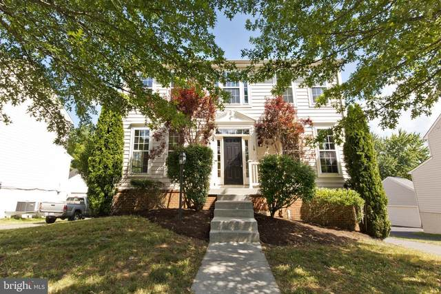 19 Cooper Run Street, LOVETTSVILLE, VA 20180 (#VALO415934) :: Peter Knapp Realty Group