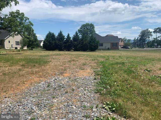 9242 Mcgaheysville Road, ELKTON, VA 22827 (#VARO101280) :: Dart Homes