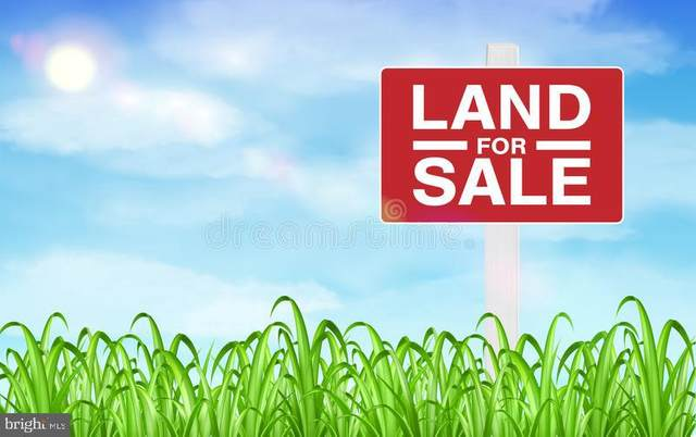 7213 Orth Road, BALTIMORE, MD 21219 (#MDBC499698) :: V Sells & Associates | Keller Williams Integrity