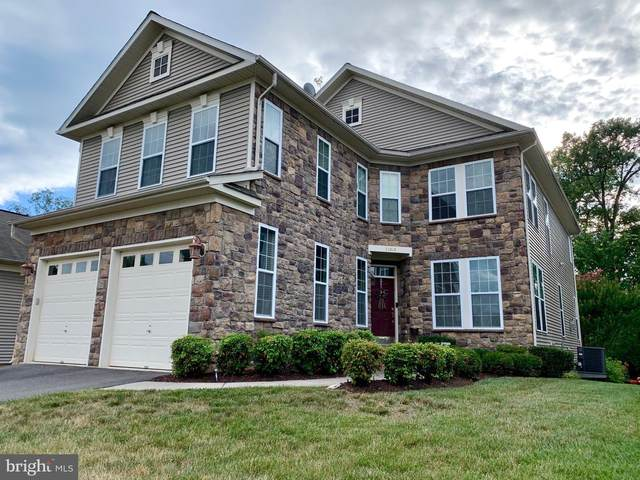 24949 Devonian Drive, ALDIE, VA 20105 (#VALO415990) :: Shamrock Realty Group, Inc
