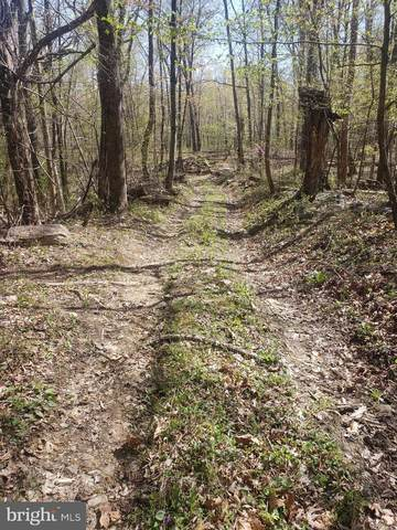 Lot 2 Back Road, MAURERTOWN, VA 22644 (#VASH119720) :: Larson Fine Properties