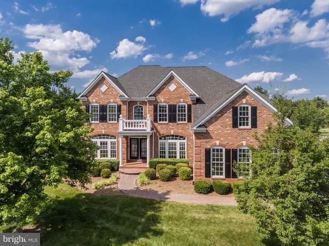 42580 Cochrans Lock Drive, ASHBURN, VA 20148 (#VALO416066) :: Debbie Dogrul Associates - Long and Foster Real Estate