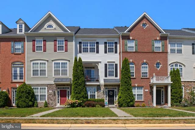 22983 Eversole Terrace, BRAMBLETON, VA 20148 (#VALO416072) :: Scott Kompa Group