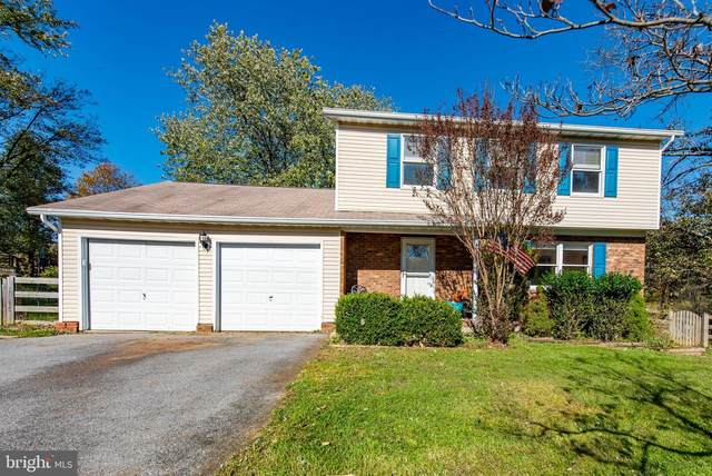 4730 Hale Haven Drive, ELLICOTT CITY, MD 21043 (#MDHW282294) :: The Redux Group