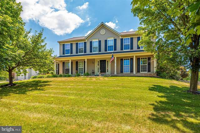 6 Redfern Place, BOONSBORO, MD 21713 (#MDWA173430) :: The Vashist Group