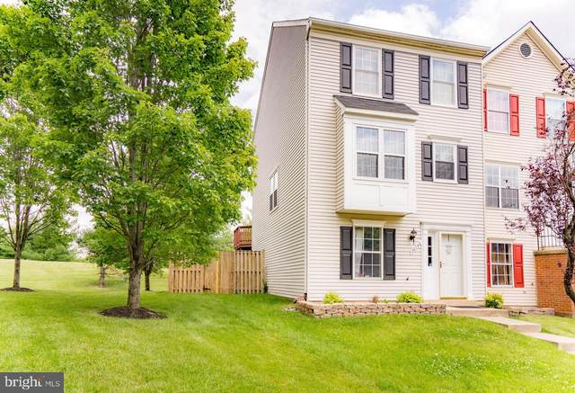 20740 Apollo Terrace, ASHBURN, VA 20147 (#VALO416100) :: Cristina Dougherty & Associates