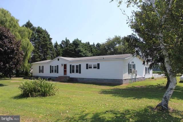 4729 Bucktown Road, CAMBRIDGE, MD 21613 (#MDDO125696) :: McClain-Williamson Realty, LLC.