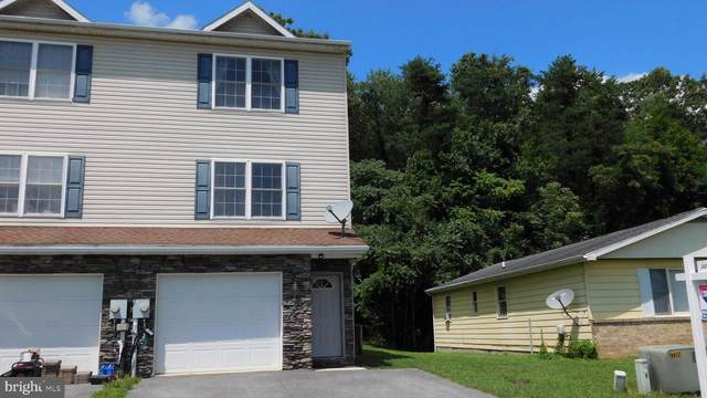 1002 Terrace Heights Drive, HANCOCK, MD 21750 (#MDWA173436) :: RE/MAX 1st Realty