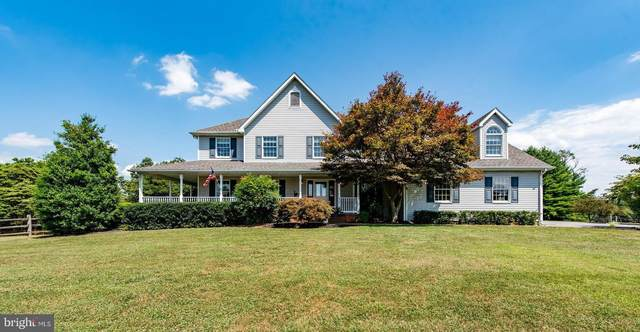 6301 Wild Lake Drive, SYKESVILLE, MD 21784 (#MDCR198082) :: Bob Lucido Team of Keller Williams Integrity