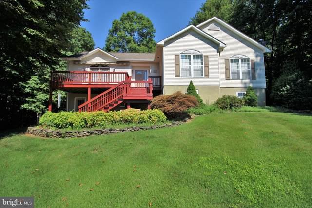 597 Overton Drive, MINERAL, VA 23117 (#VALA121544) :: Bic DeCaro & Associates