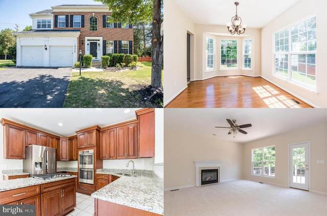 18250 Maple Spring Court, LEESBURG, VA 20176 (#VALO416182) :: Pearson Smith Realty