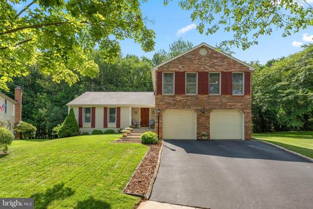 10853 Green View Way, COLUMBIA, MD 21044 (#MDHW282362) :: John Smith Real Estate Group