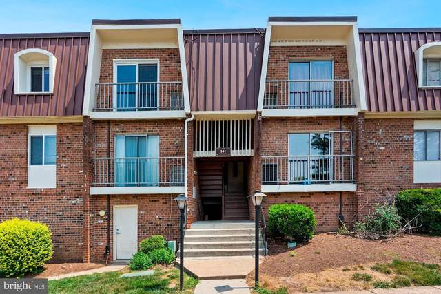 141 N Emory Drive #2, STERLING, VA 20164 (#VALO416192) :: Crossman & Co. Real Estate