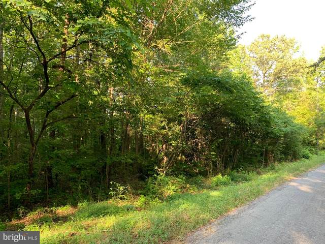 LOT 5 Apple Grove Rd, MINERAL, VA 23117 (#VALA121548) :: Corner House Realty