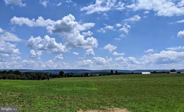 0 Scenic View Road, PINE GROVE, PA 17963 (#PASK131478) :: Ramus Realty Group
