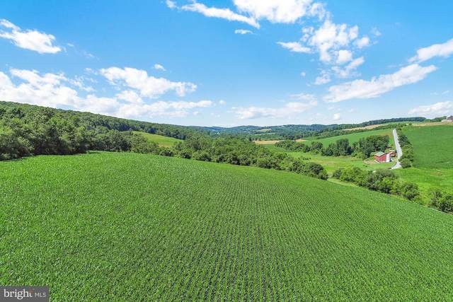 Stine Hill Road, RED LION, PA 17356 (#PAYK141580) :: Iron Valley Real Estate