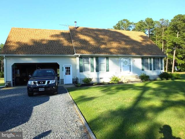 3203 Bay View Drive, CHURCH CREEK, MD 21622 (#MDDO125704) :: The Rhonda Frick Team