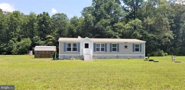 26180 Auction Road, FEDERALSBURG, MD 21632 (#MDCM124250) :: Bob Lucido Team of Keller Williams Integrity