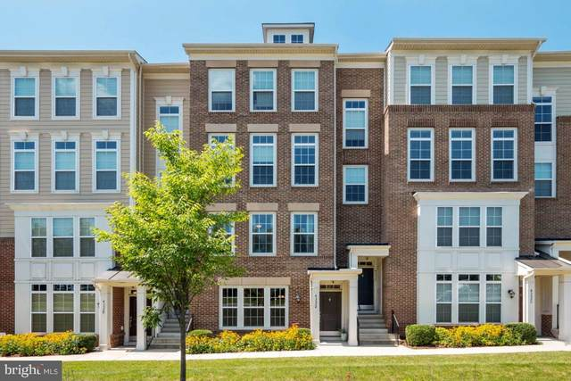 43524 Stonecliff Terrace, CHANTILLY, VA 20152 (#VALO416278) :: Cristina Dougherty & Associates