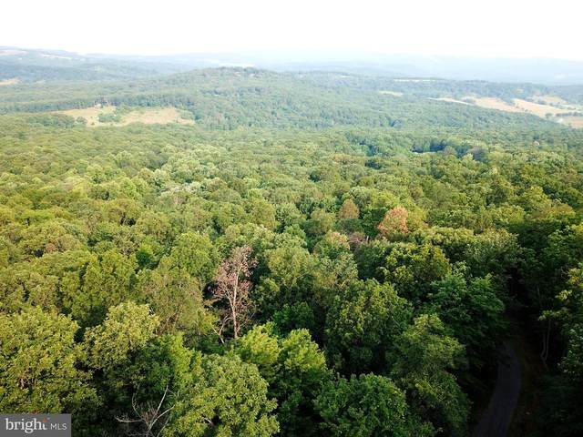 Lot 50 Old Poplar Drive, BAKER, WV 26801 (#WVHD106126) :: Colgan Real Estate