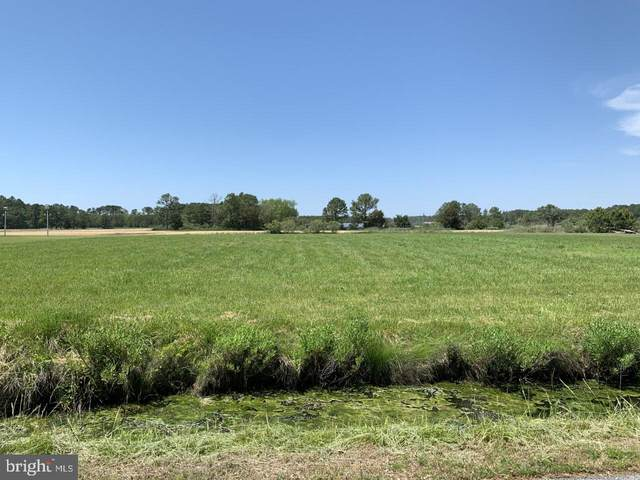 Lot 3 Saint Peters Church Road, CRISFIELD, MD 21817 (#MDSO103726) :: Brandon Brittingham's Team