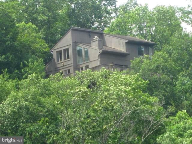 160 Erika Drive, BASYE, VA 22810 (#VASH119750) :: Blackwell Real Estate