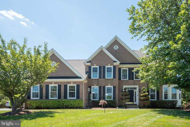 44247 Oldetowne Place, ASHBURN, VA 20147 (#VALO416348) :: Cristina Dougherty & Associates