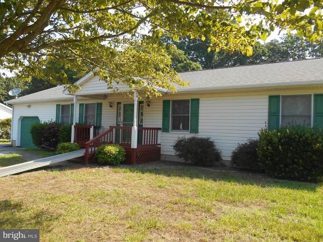 1 Violet Drive, LINCOLN, DE 19960 (#DESU164790) :: Bright Home Group