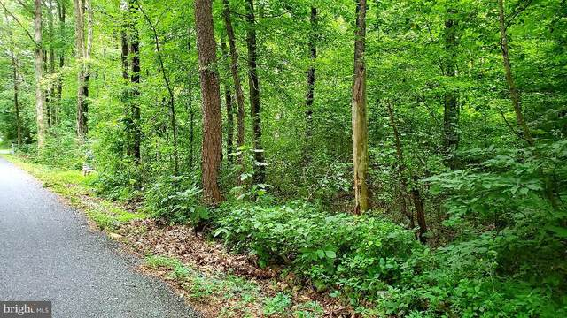 Lot 1 Bloody Spring Road, BERNVILLE, PA 19506 (#PABK360876) :: Ramus Realty Group