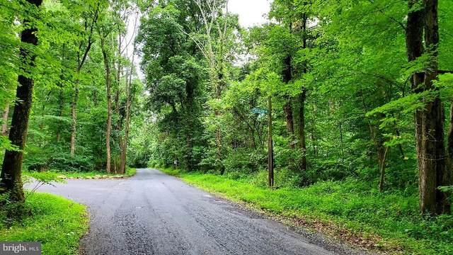 Lot 2 Bloody Spring Road, BERNVILLE, PA 19506 (#PABK360882) :: Ramus Realty Group