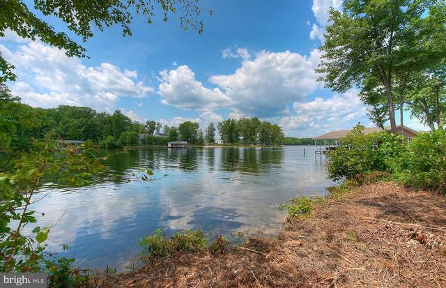 Ark, BUMPASS, VA 23024 (#VALA121588) :: Great Falls Great Homes