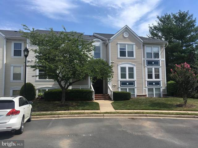 44156 Natalie Terrace #201, ASHBURN, VA 20147 (#VALO416494) :: Crossman & Co. Real Estate
