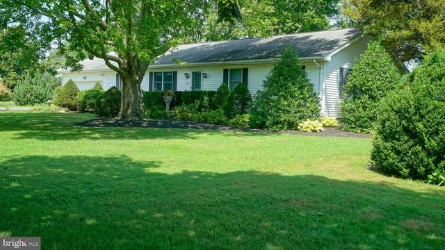 5605 Langford Bay Road, CHESTERTOWN, MD 21620 (#MDKE116826) :: AJ Team Realty