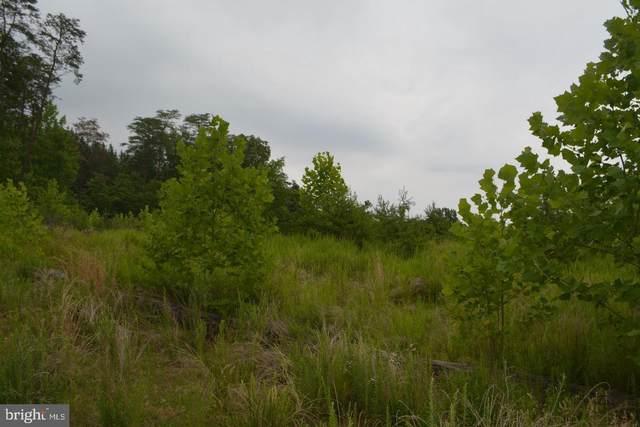 17413 Mine Road, DUMFRIES, VA 22025 (#VAPW500140) :: LoCoMusings