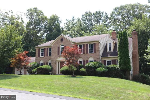 11783 Hollyview Drive, GREAT FALLS, VA 22066 (#VAFX1142708) :: Coleman & Associates