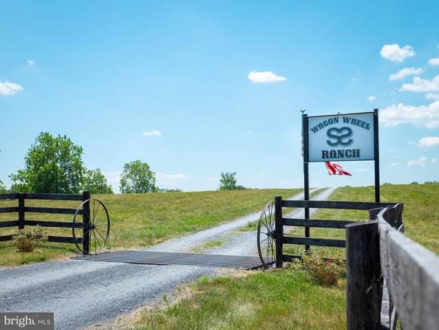 5522 Cedar Creek Grade, WINCHESTER, VA 22602 (#VAFV158692) :: Advon Group