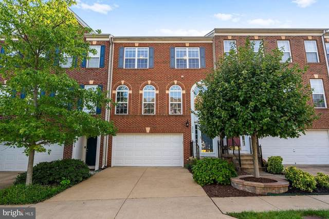 6626 Springirth Terrace, ALEXANDRIA, VA 22315 (#VAFX1142984) :: Tom & Cindy and Associates
