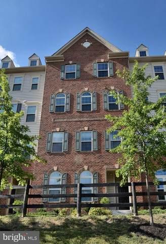42091 Shadows Pride Terrace, ALDIE, VA 20105 (#VALO416832) :: The Sky Group