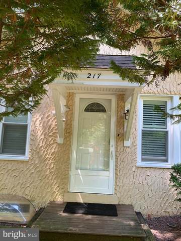 217 Lancaster Avenue, MT GRETNA, PA 17064 (#PALN114808) :: TeamPete Realty Services, Inc