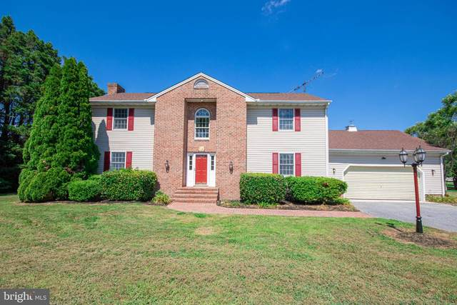 3506 Indian Creek Road, EAST NEW MARKET, MD 21631 (#MDDO125748) :: RE/MAX Coast and Country