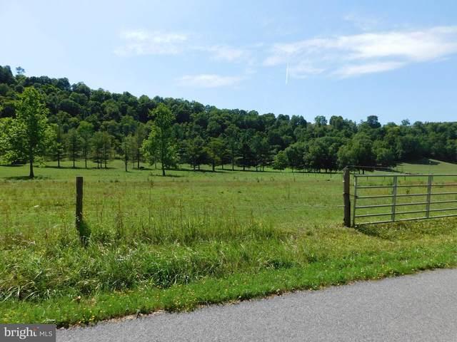 Cooks Mill Road, HYNDMAN, PA 15545 (#PABD102398) :: LoCoMusings