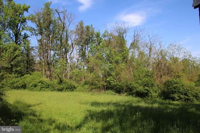 Mountain Orchard Lane, ROUND HILL, VA 20141 (#VALO416894) :: LoCoMusings