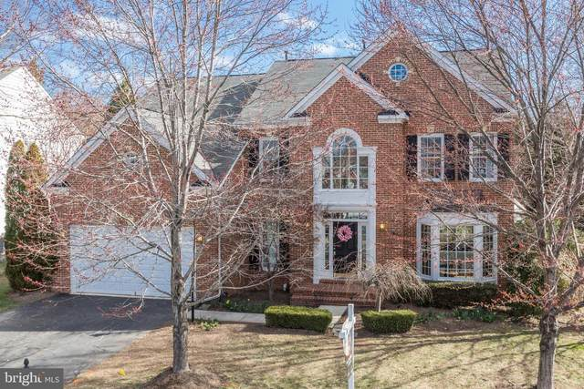 47440 Middle Bluff Place, STERLING, VA 20165 (#VALO416906) :: LoCoMusings